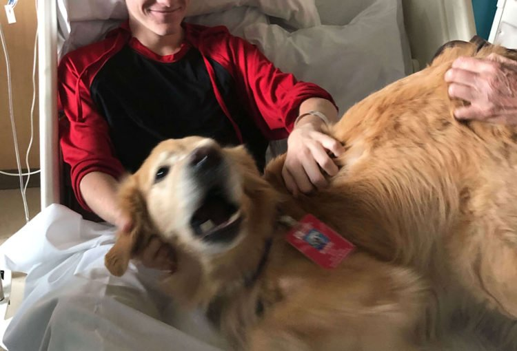 Jaxon really loved the therapy dog visits